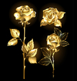 Set of Golden Roses vector image