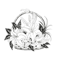 Lily in black and white colors vector image vector image