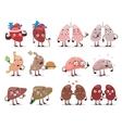 Human organs characters vector image