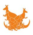 kangaroo family kind of australian wallaby herd vector image