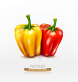 Two peppers red and yellow isolated vector image