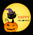 Cute black cat on a halloween pumpkin card vector image