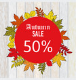 autumn sale discount design with colorful leaves vector image