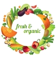 Organic Vegetables Round Composition vector image