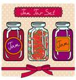 set of retro jam jars vector image
