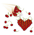 packing with cherries vector image