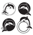 set of vintage dolphin icons emblems and labels vector image