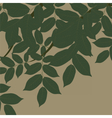 Walnut Tree leaves vector image