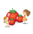 girls and tomatoes vector image vector image