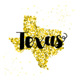 Golden glitter of the state of Texas vector image