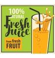 glass of fresh juice vector image vector image