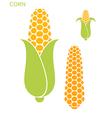 Corn Set vector image