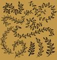 leaves set leaf outline drawing in vintage style vector image