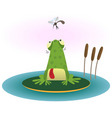 frog and gnat vector image vector image