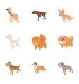 Types of dogs icons set cartoon style vector image