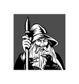 Norse God Odin holding spear with ravens vector image