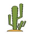 cactus plant icon image vector image
