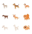Doggy icons set cartoon style vector image