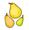 isolated on white pears vector image