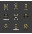 Lion diamond emblems vector image