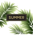 Tropical palm leaves design for text card vector image