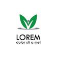 green letter v logo vector image