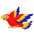 macaw bird cartoon flying vector image