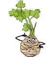 funny celery vegetable cartoon vector image vector image