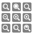 Magnifier Glass and Zoom Icons set vector image