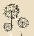 Abstract Dandalions background vector image vector image