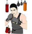 Boxer in training vector image