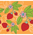 strawberry  butterfly vector image vector image