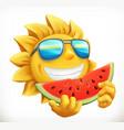 fun summer sun with watermelon 3d icon vector image