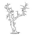 old tree vector image vector image