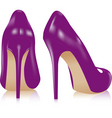 pair of high heel shoes vector image vector image