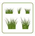 Green grass bushes isolated set vector image vector image
