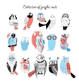 Collection of graphic owls vector image