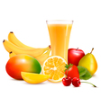 Fresh fruit and juice vector image