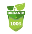 Organic natural eco label with leaves vector image