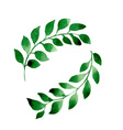 2 branches vector image