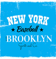 American baseball design vector image