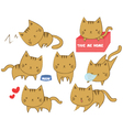 Set of cute cats in various positions vector image