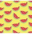 Watermelon in summer vector image