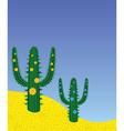 desert cactus vector image vector image