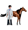 horse with vet doctor on white background vector image