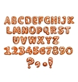 Christmas gingerbread alphabet letter and digits vector image