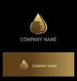 droplet gold technology logo vector image
