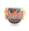 Football Badge Isolated vector image