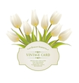 Spring flowers bouquet for sale vector image
