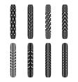 Bikes tire tracks vector image